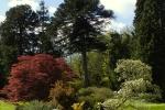 garden-sun-dial